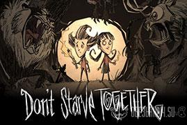 Ключ для Don't Starve Together