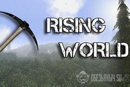 Ключ для Rising World